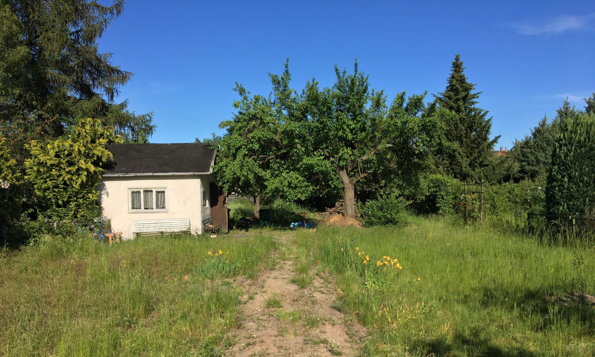 Hausbau-Blog